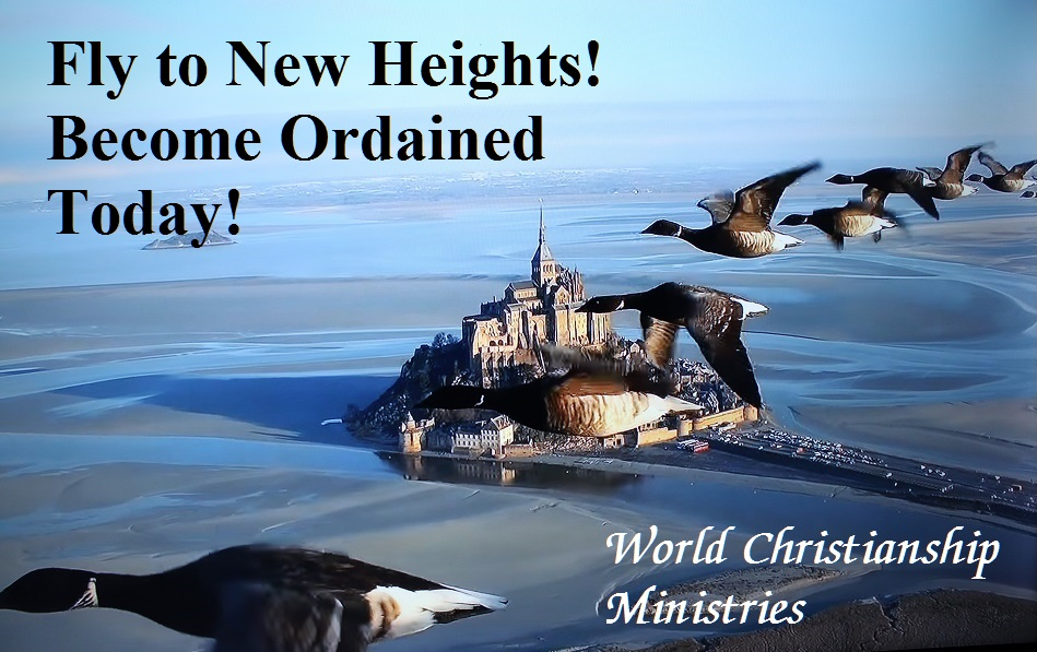 fly to new heights become ordained
