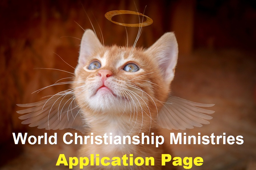 cat application page
